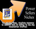 Thumbnail An Amazing eBay Power Sellers Niches E-Book